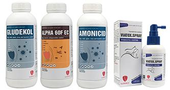 Transdermal / Antiseptic / Bugs-repellent