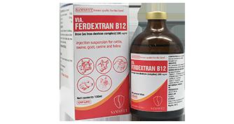 VIA.FERDEXTRAN B12