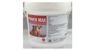 Power Max (UAE)