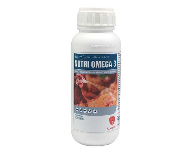 NUTRI OMEGA 3 (BANGLADESH)